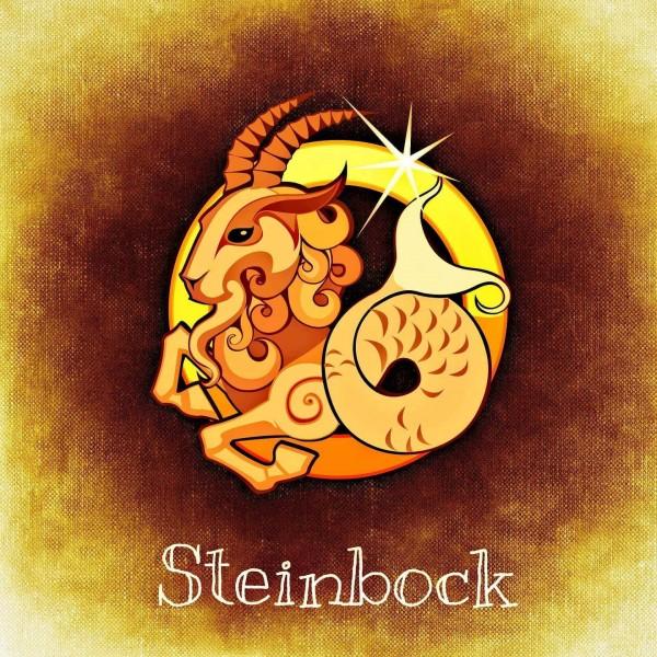 sternzeichen-horoskop-steinbock