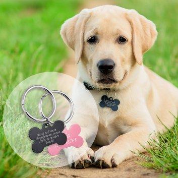 Hundemarke Knochen Varianten Labrador